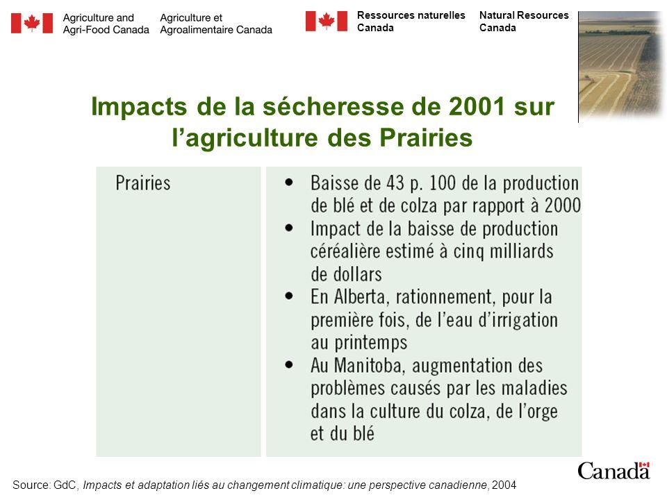 Impacts de la sécheresse de 2001 sur l'agriculture des Prairies