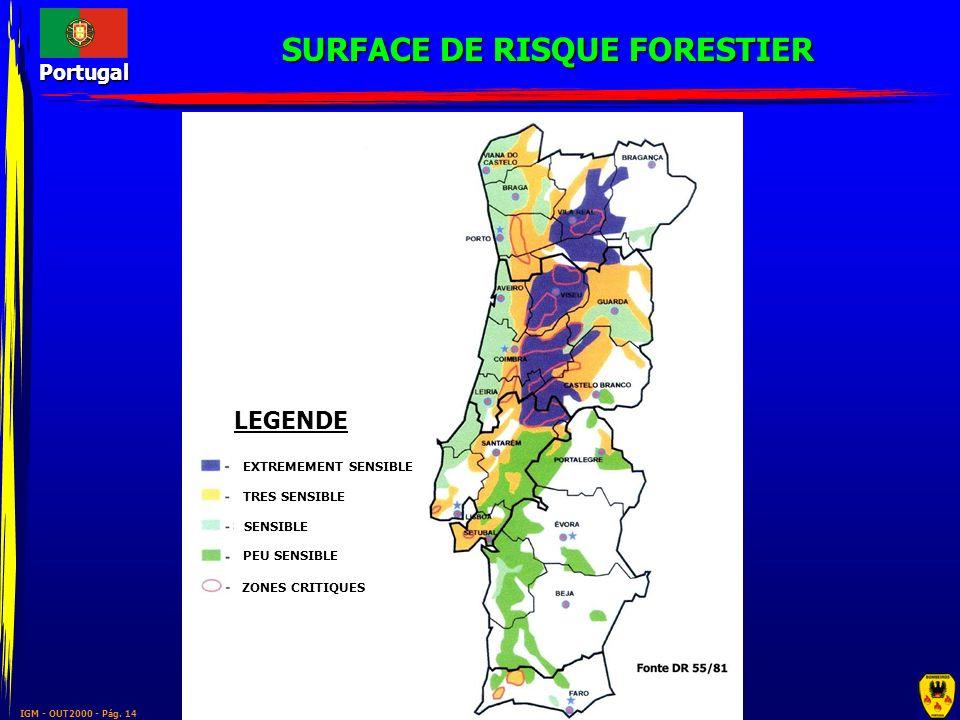 SURFACE DE RISQUE FORESTIER