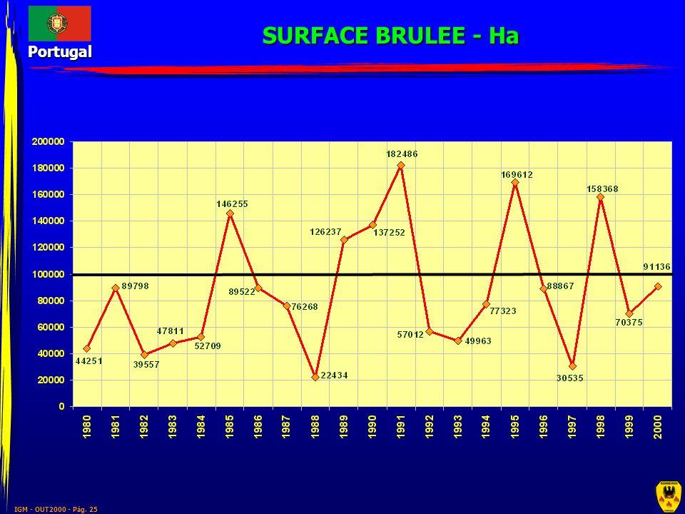 SURFACE BRULEE - Ha