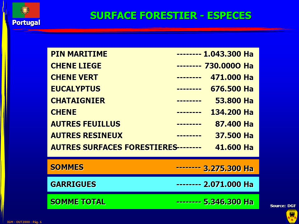 SURFACE FORESTIER - ESPECES