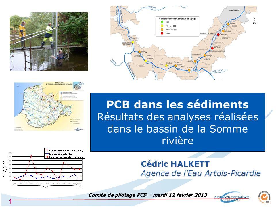 Comité de pilotage PCB – mardi 12 février 2013