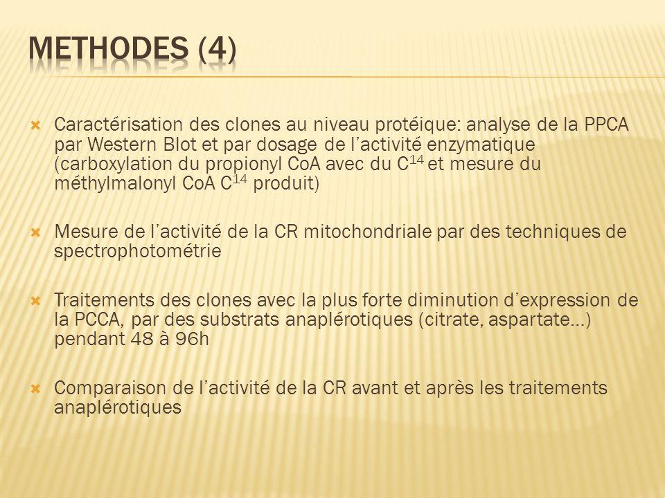 Methodes (4)
