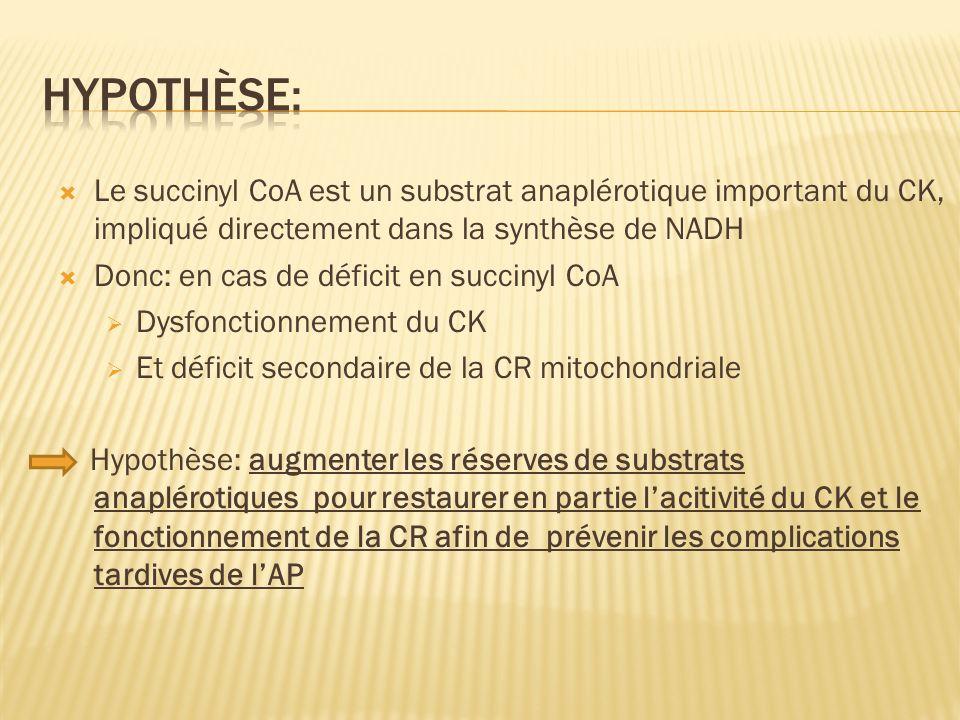 Hypothèse: Le succinyl CoA est un substrat anaplérotique important du CK, impliqué directement dans la synthèse de NADH.
