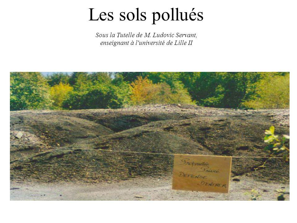 Les sols pollués Sous la Tutelle de M. Ludovic Servant,