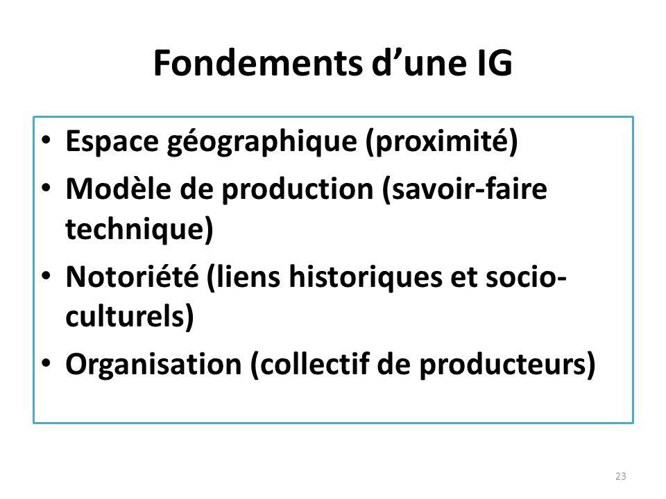 Fondements d'une IG Espace géographique (proximité)