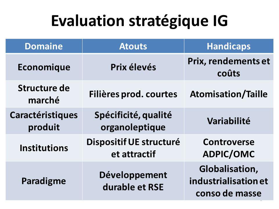 Evaluation stratégique IG