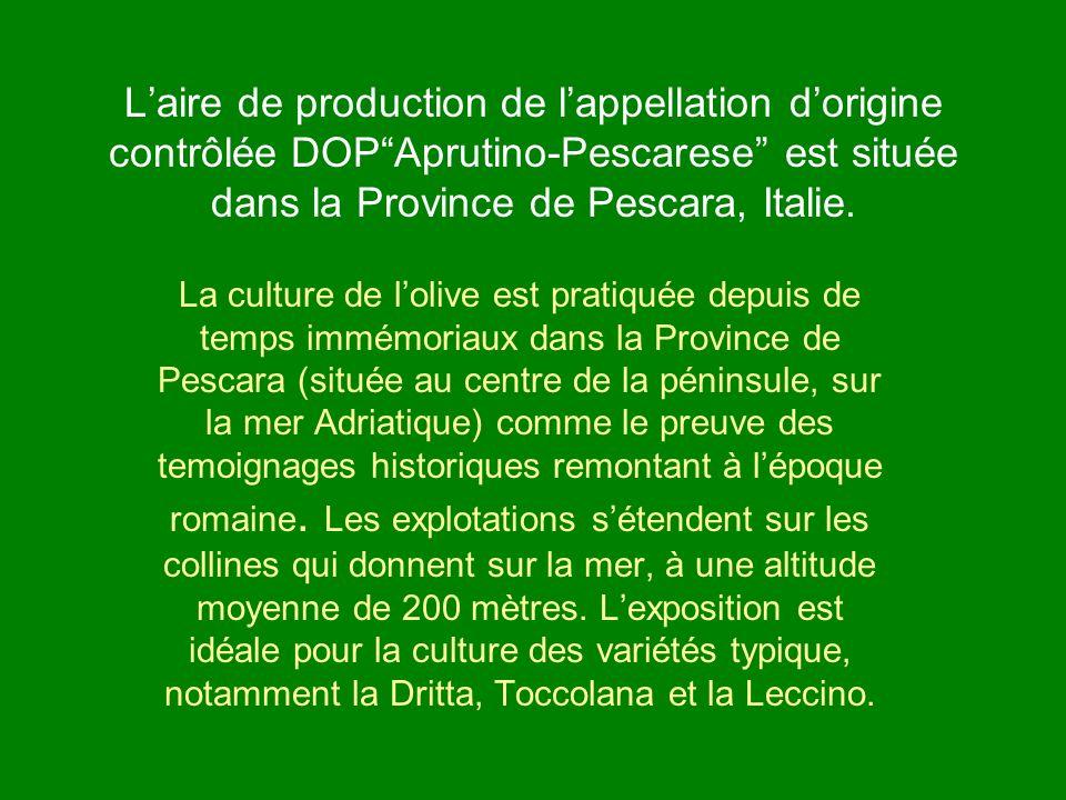 L'aire de production de l'appellation d'origine contrôlée DOP Aprutino-Pescarese est située dans la Province de Pescara, Italie.