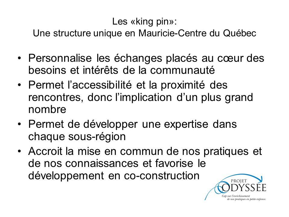 Les «king pin»: Une structure unique en Mauricie-Centre du Québec