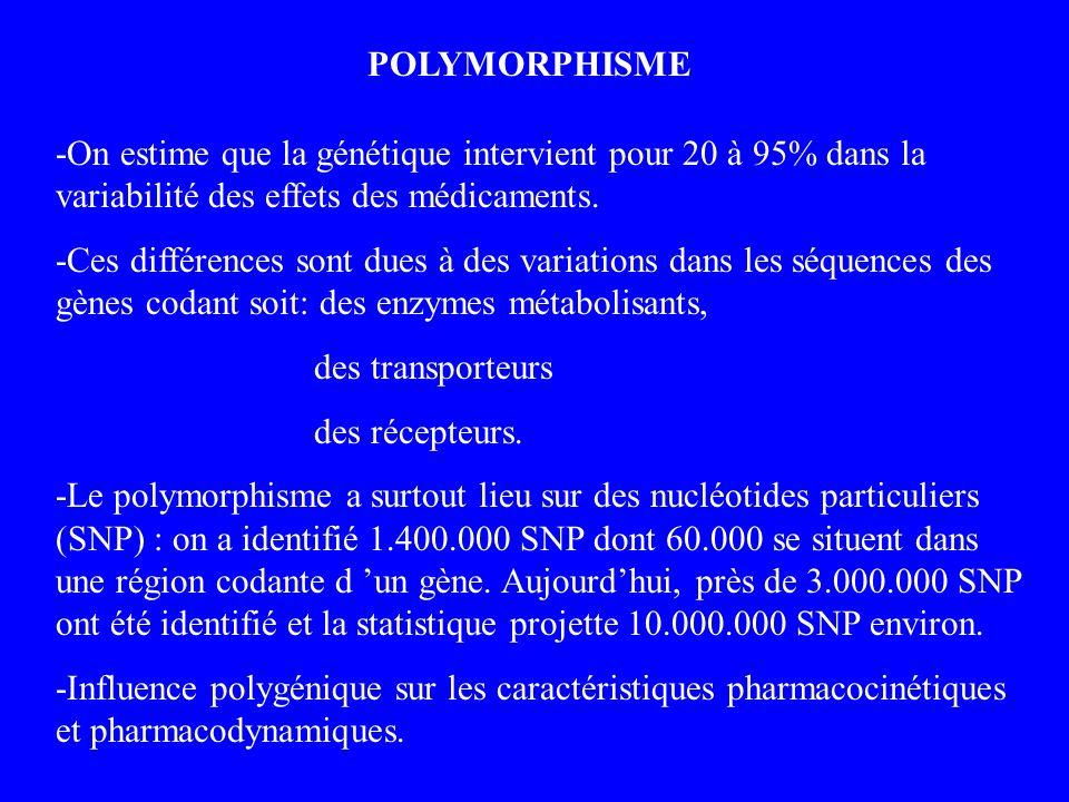 POLYMORPHISME -On estime que la génétique intervient pour 20 à 95% dans la variabilité des effets des médicaments.