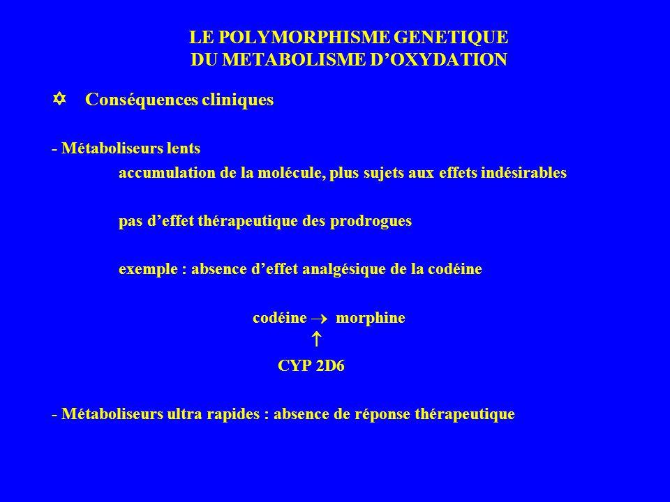 LE POLYMORPHISME GENETIQUE DU METABOLISME D'OXYDATION