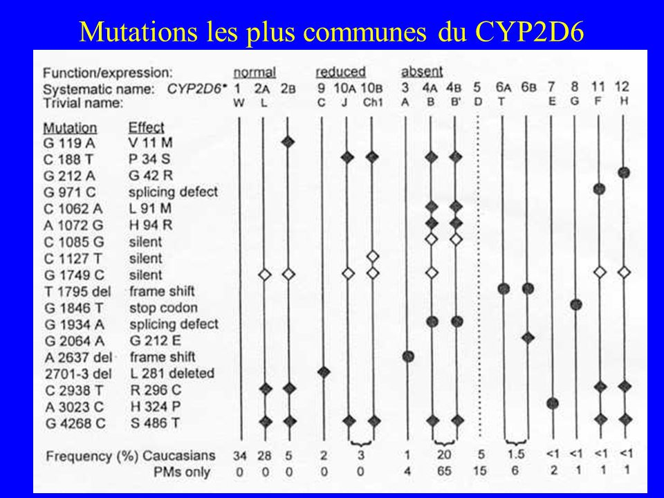 Mutations les plus communes du CYP2D6