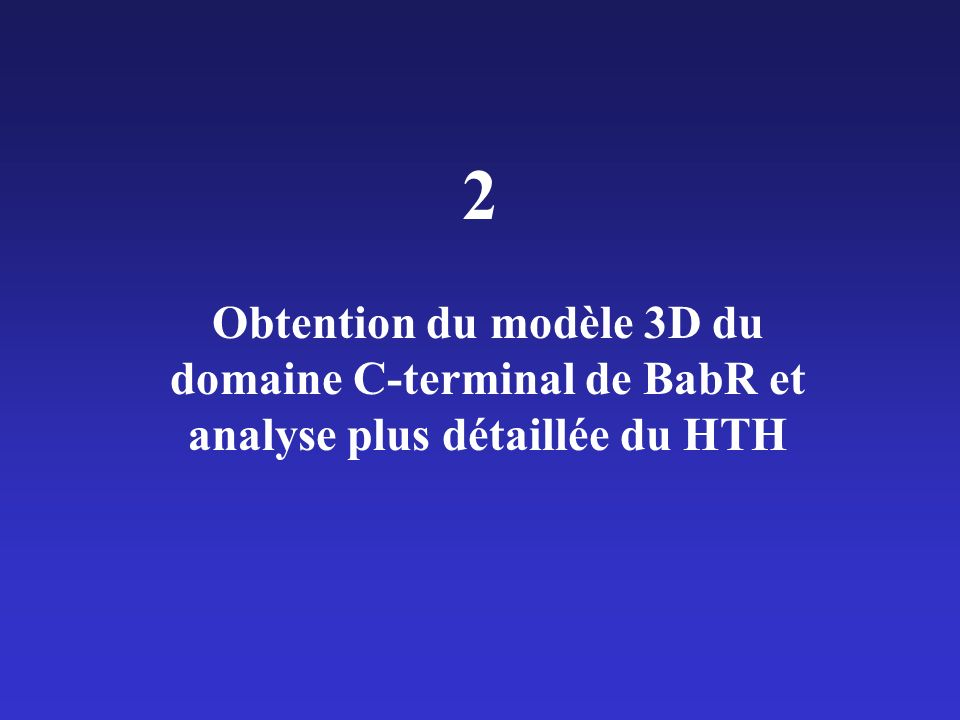 2 Obtention du modèle 3D du domaine C-terminal de BabR et analyse plus détaillée du HTH