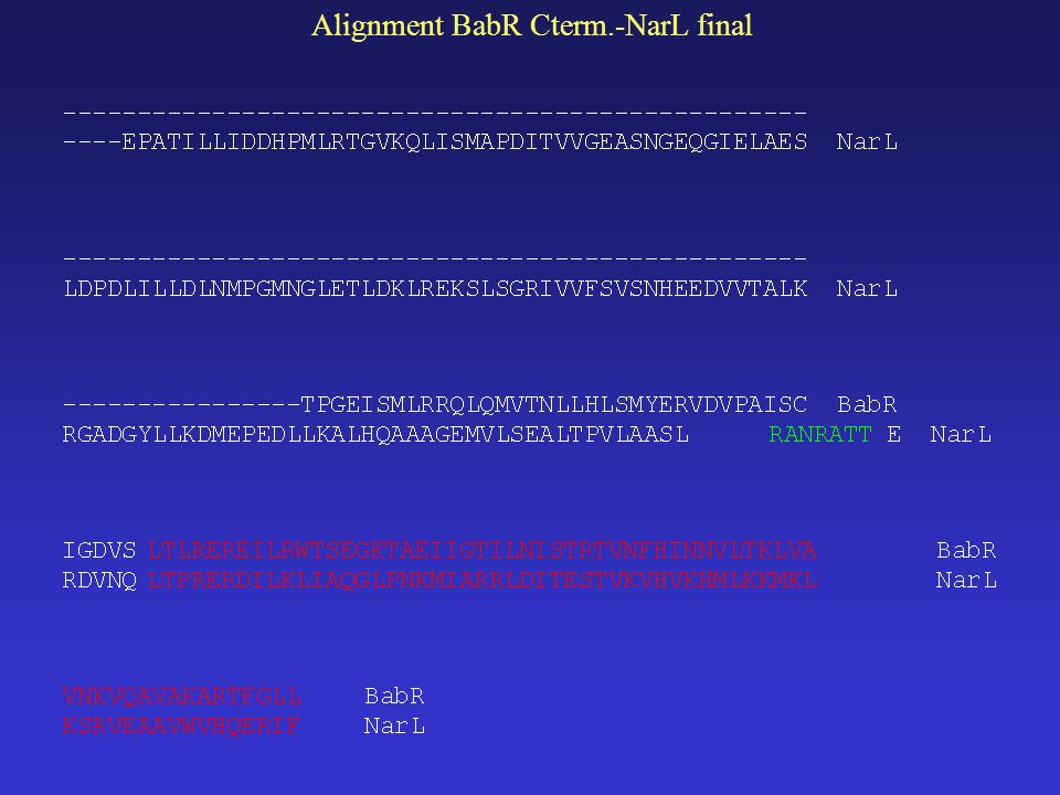 Alignment BabR Cterm.-NarL final