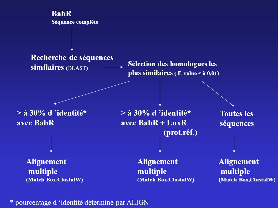 Recherche de séquences similaires (BLAST)