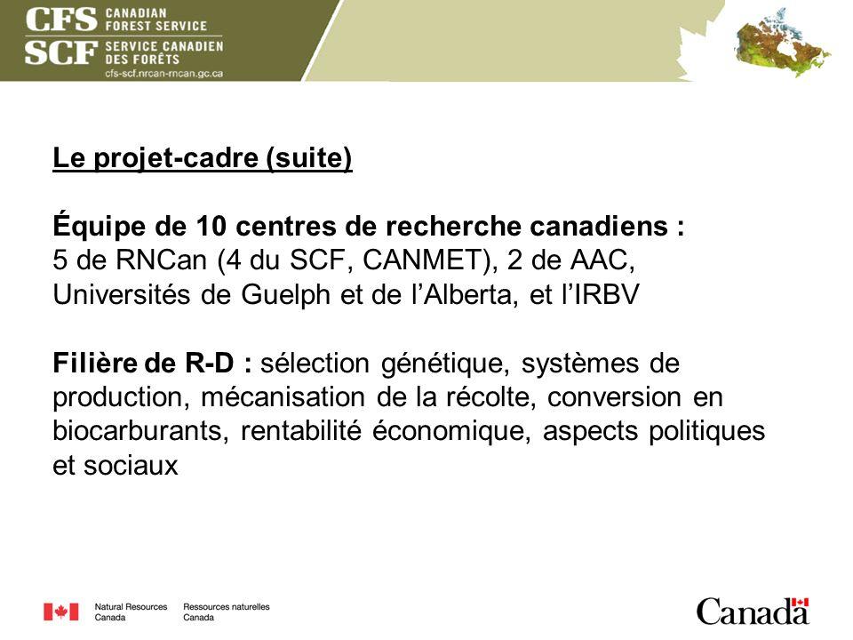Le projet-cadre (suite) Équipe de 10 centres de recherche canadiens : 5 de RNCan (4 du SCF, CANMET), 2 de AAC, Universités de Guelph et de l'Alberta, et l'IRBV Filière de R-D : sélection génétique, systèmes de production, mécanisation de la récolte, conversion en biocarburants, rentabilité économique, aspects politiques et sociaux