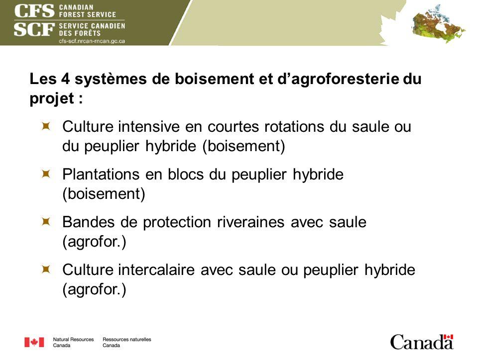 Les 4 systèmes de boisement et d'agroforesterie du projet :