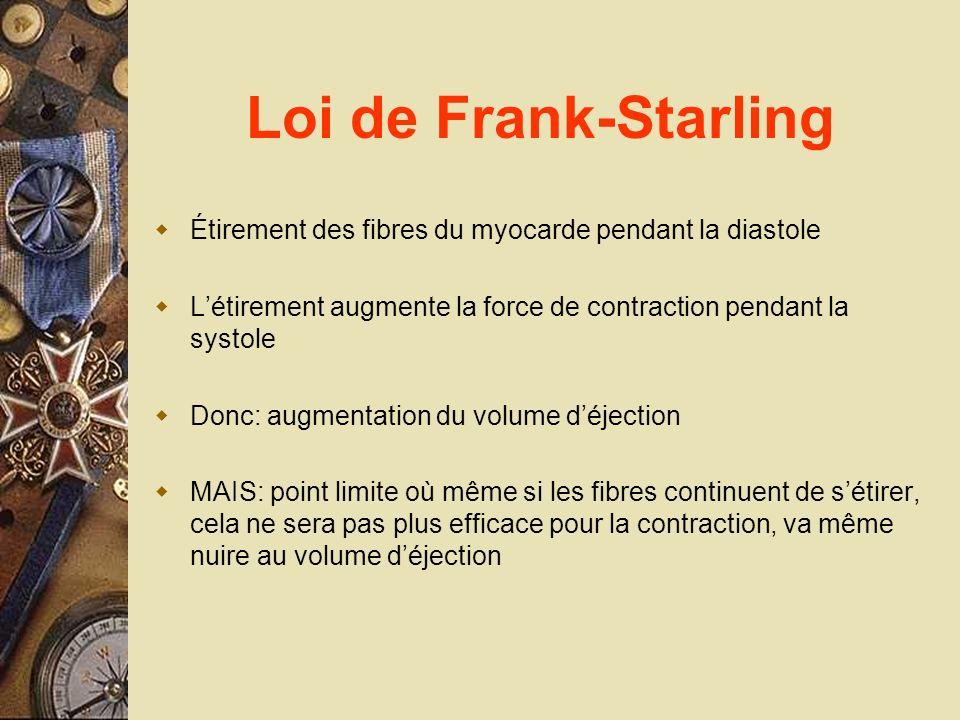 Loi de Frank-Starling Étirement des fibres du myocarde pendant la diastole. L'étirement augmente la force de contraction pendant la systole.