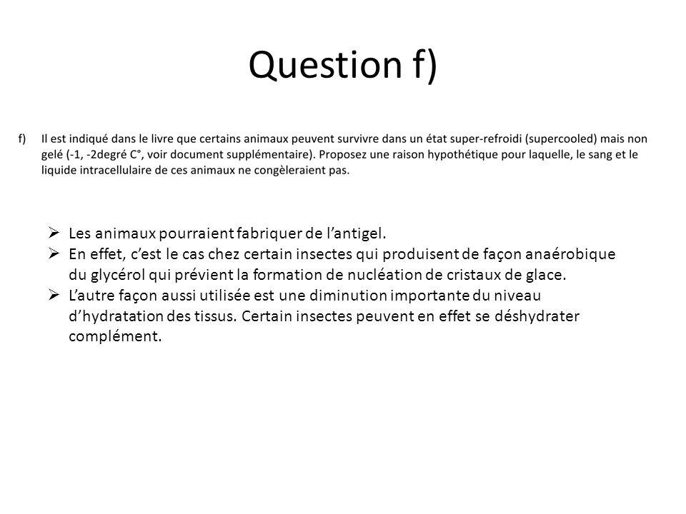 Question f) Les animaux pourraient fabriquer de l'antigel.