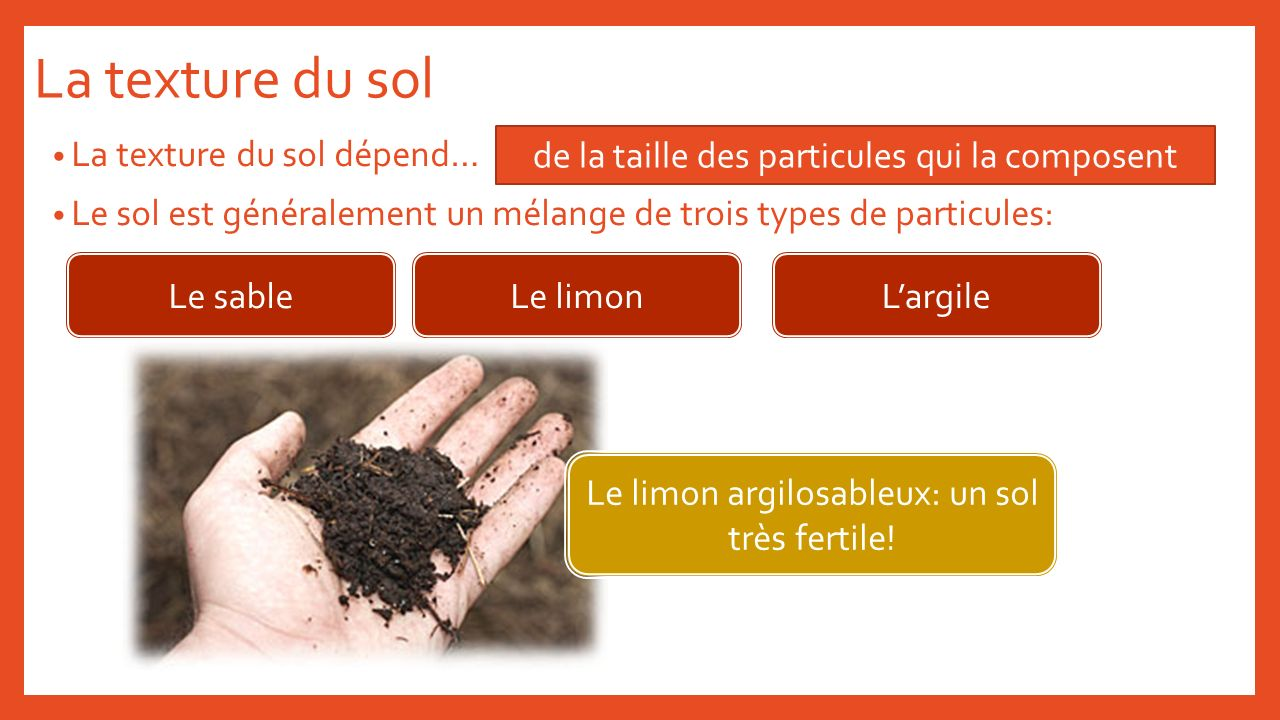 La texture du sol La texture du sol dépend…