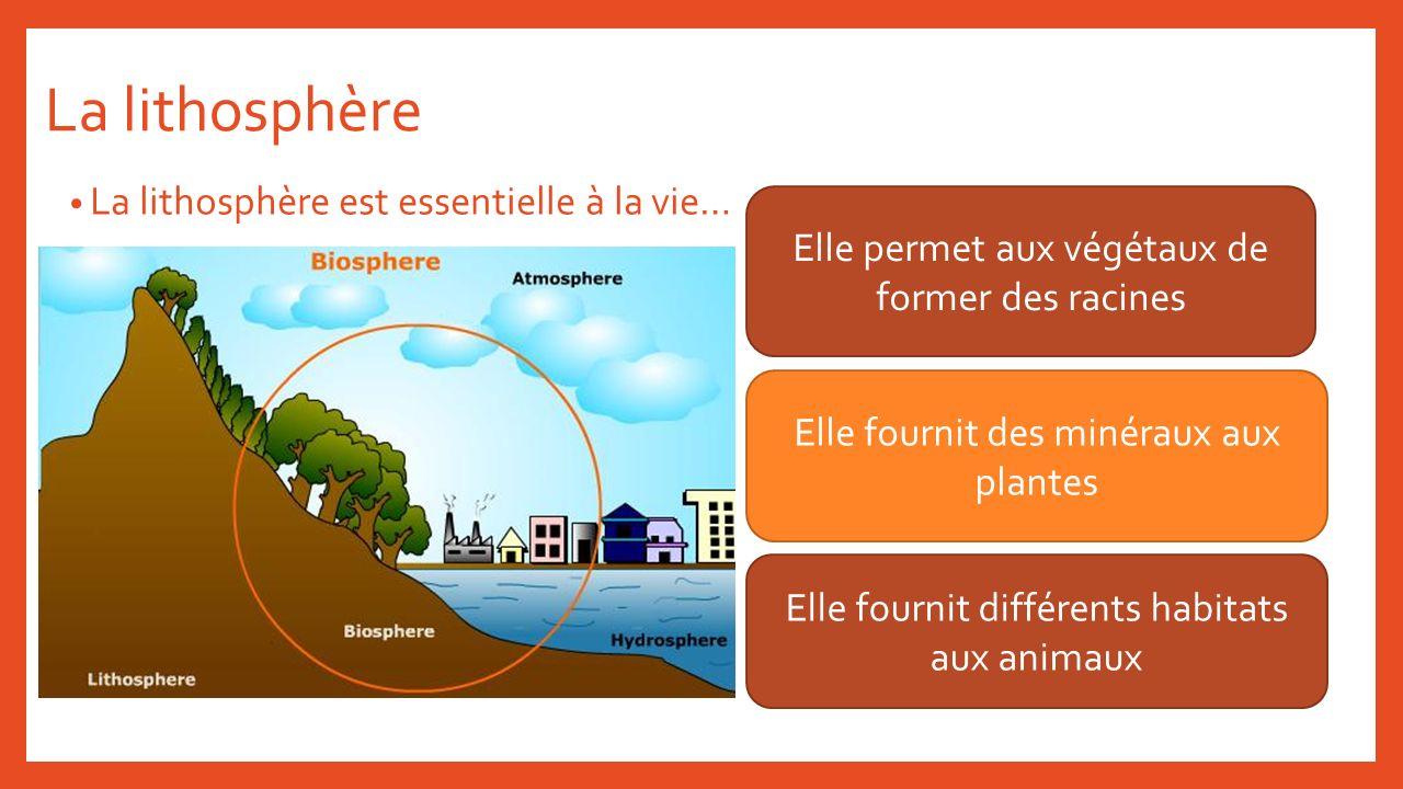 La lithosphère La lithosphère est essentielle à la vie…