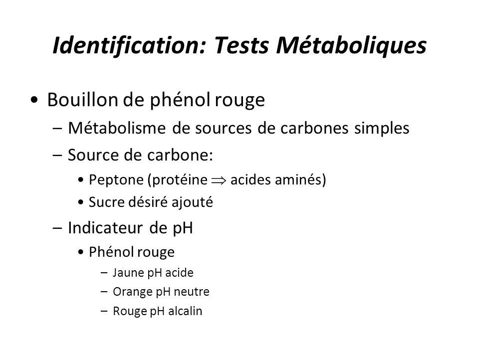 Identification: Tests Métaboliques