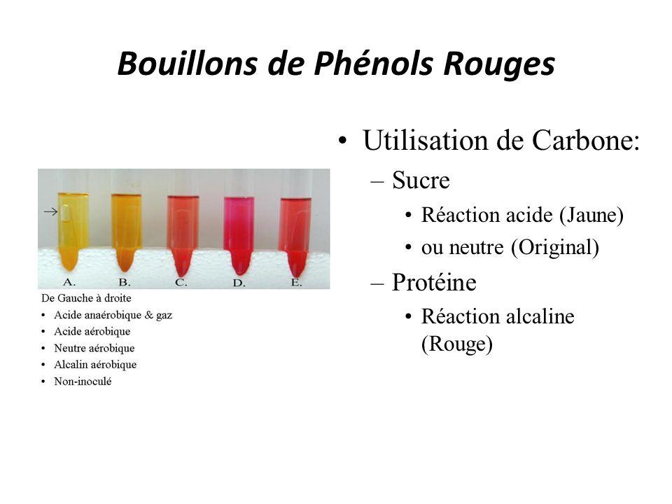 Bouillons de Phénols Rouges
