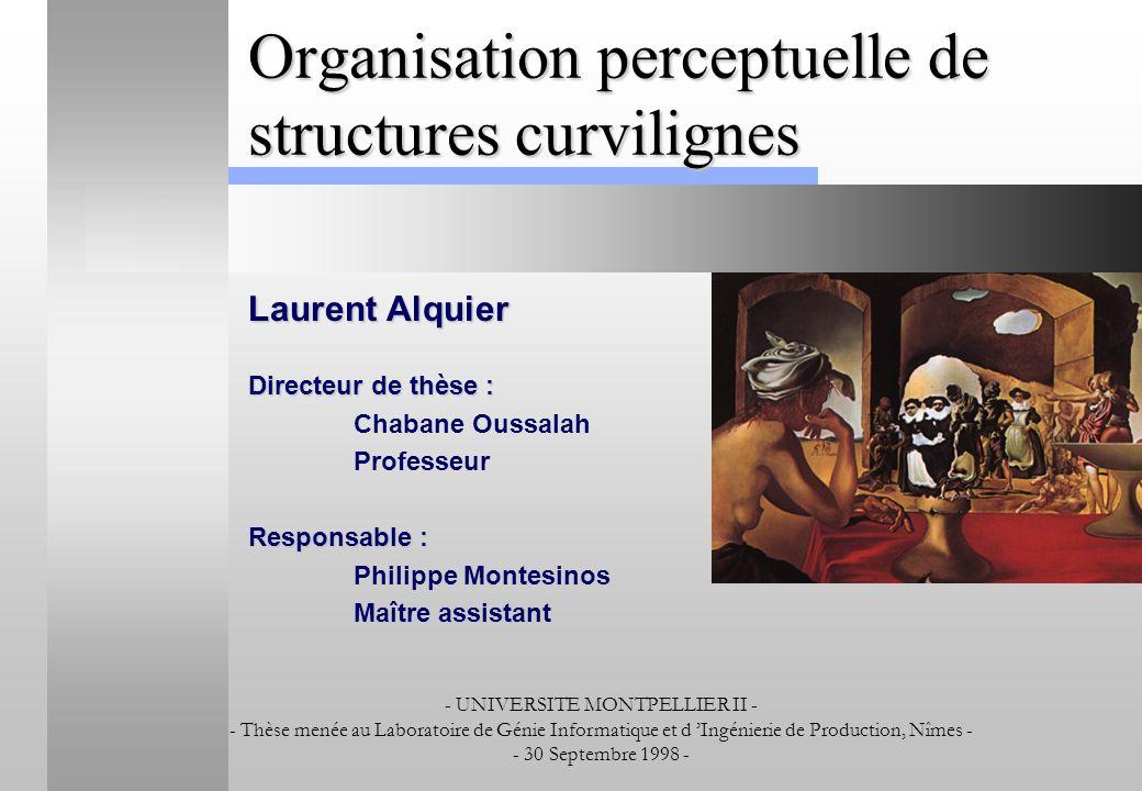 Organisation perceptuelle de structures curvilignes