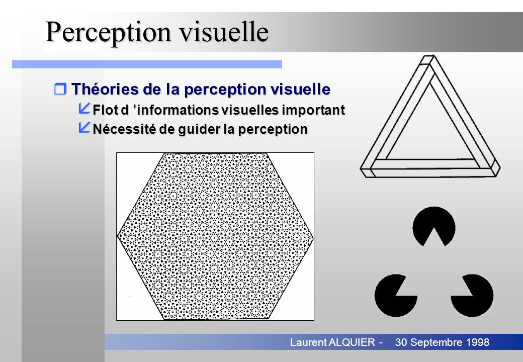 Perception visuelle Théories de la perception visuelle