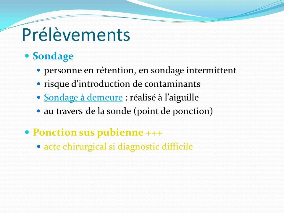Prélèvements Sondage Ponction sus pubienne +++