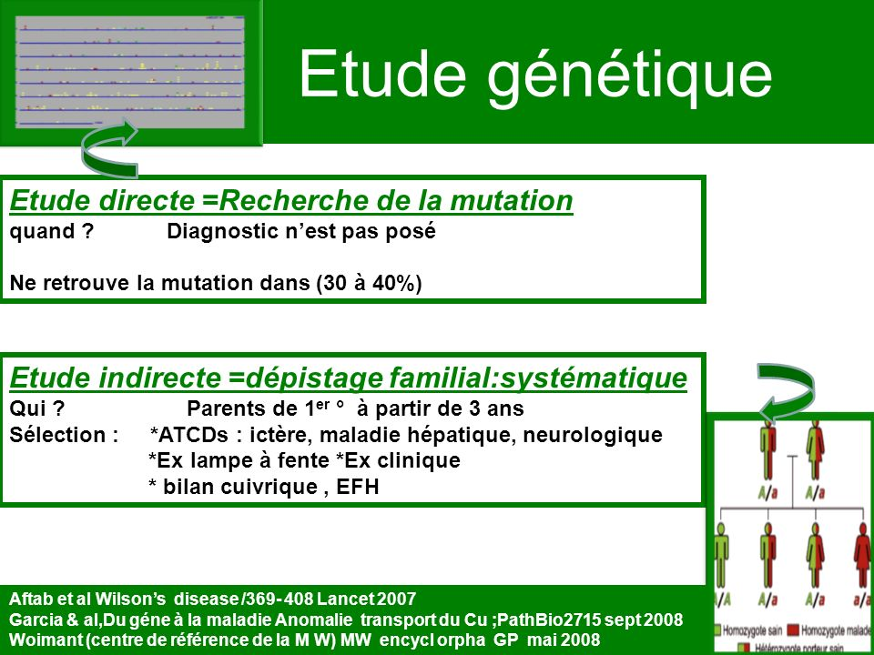 Etude génétique Etude directe =Recherche de la mutation