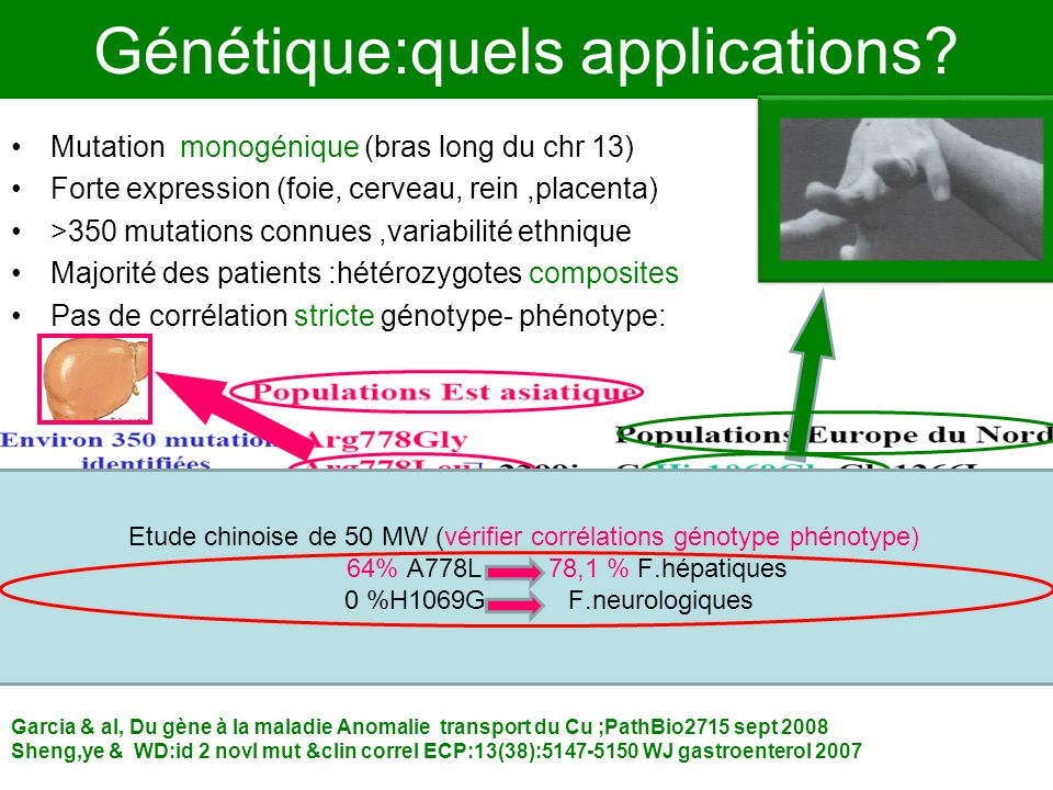 Génétique:quels applications