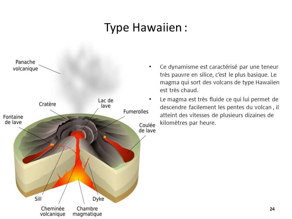 Type Hawaiien :