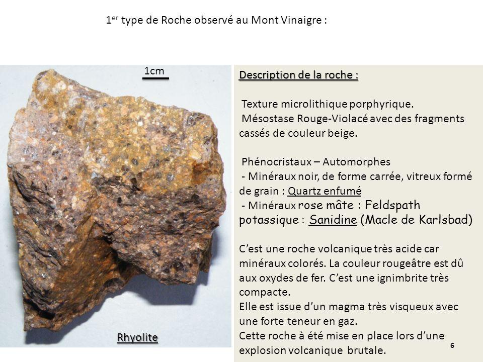 1er type de Roche observé au Mont Vinaigre :