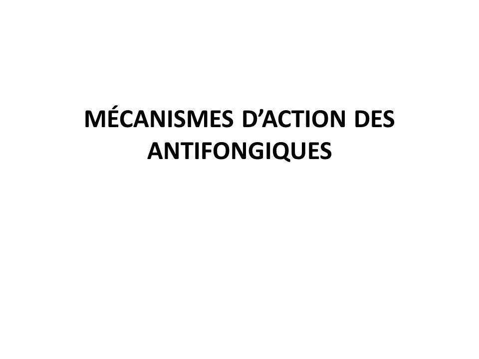 MÉCANISMES D'ACTION DES ANTIFONGIQUES