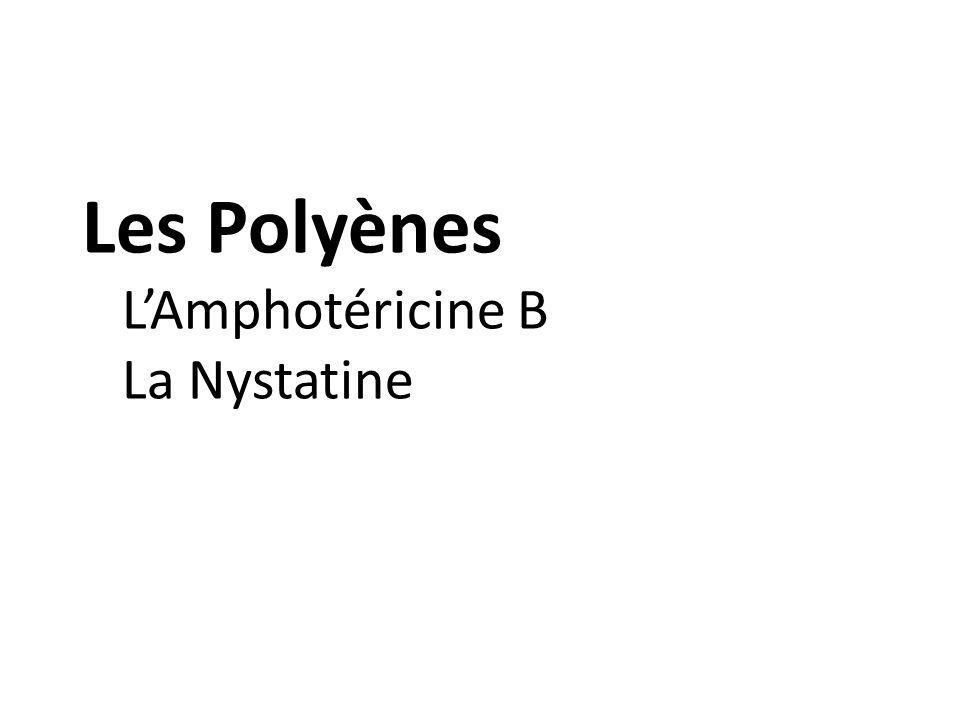 Les Polyènes L'Amphotéricine B La Nystatine