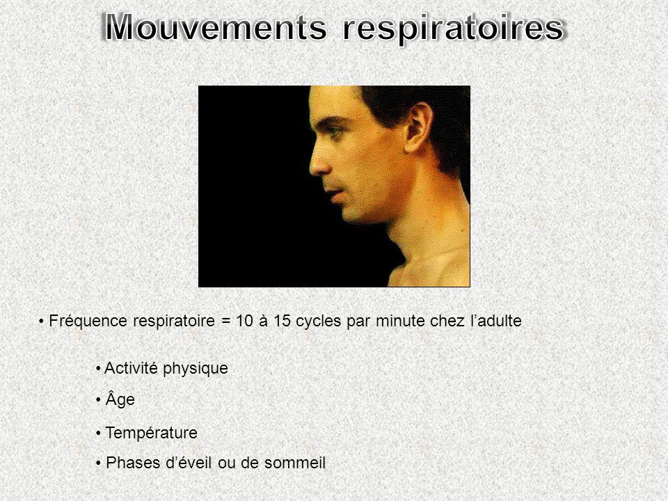 Mouvements respiratoires