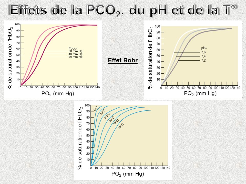 Effets de la PCO2, du pH et de la T°