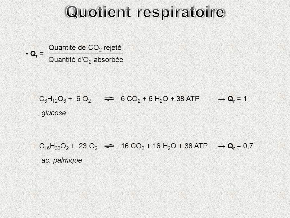 Quotient respiratoire