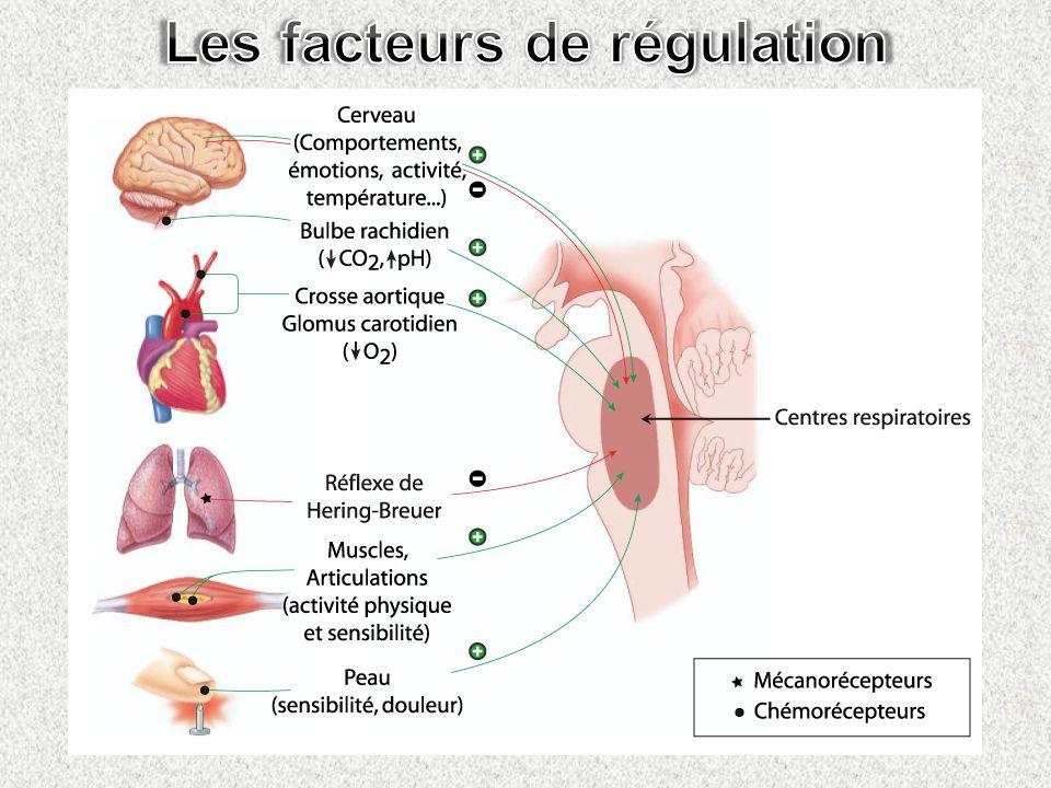 Les facteurs de régulation