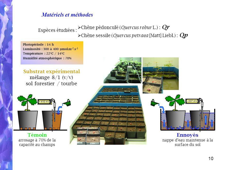 Substrat expérimental