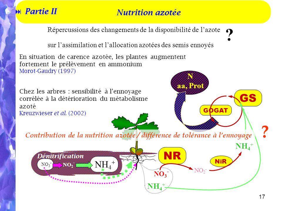 GS NR NH4+ Partie II Nutrition azotée N aa, Prot NH4+ NH4+ 