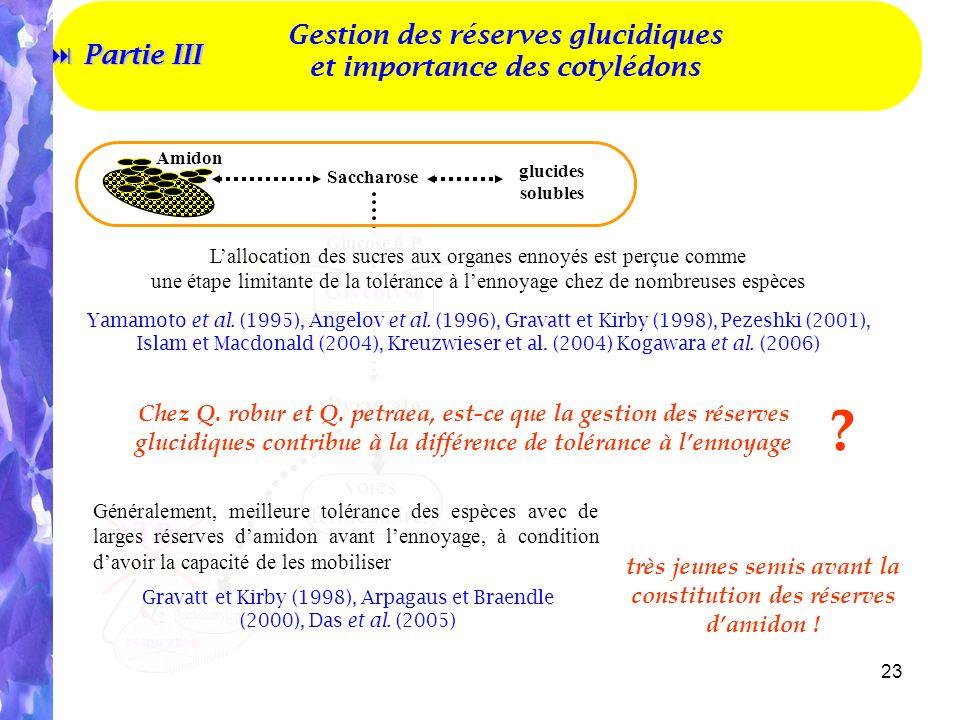 Gestion des réserves glucidiques et importance des cotylédons