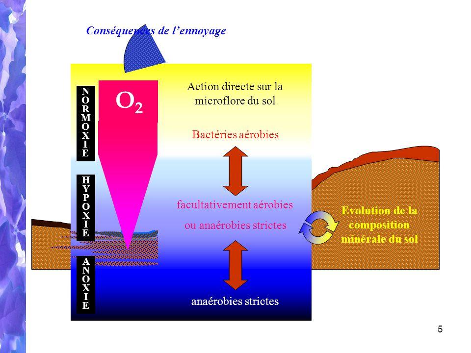 Evolution de la composition minérale du sol