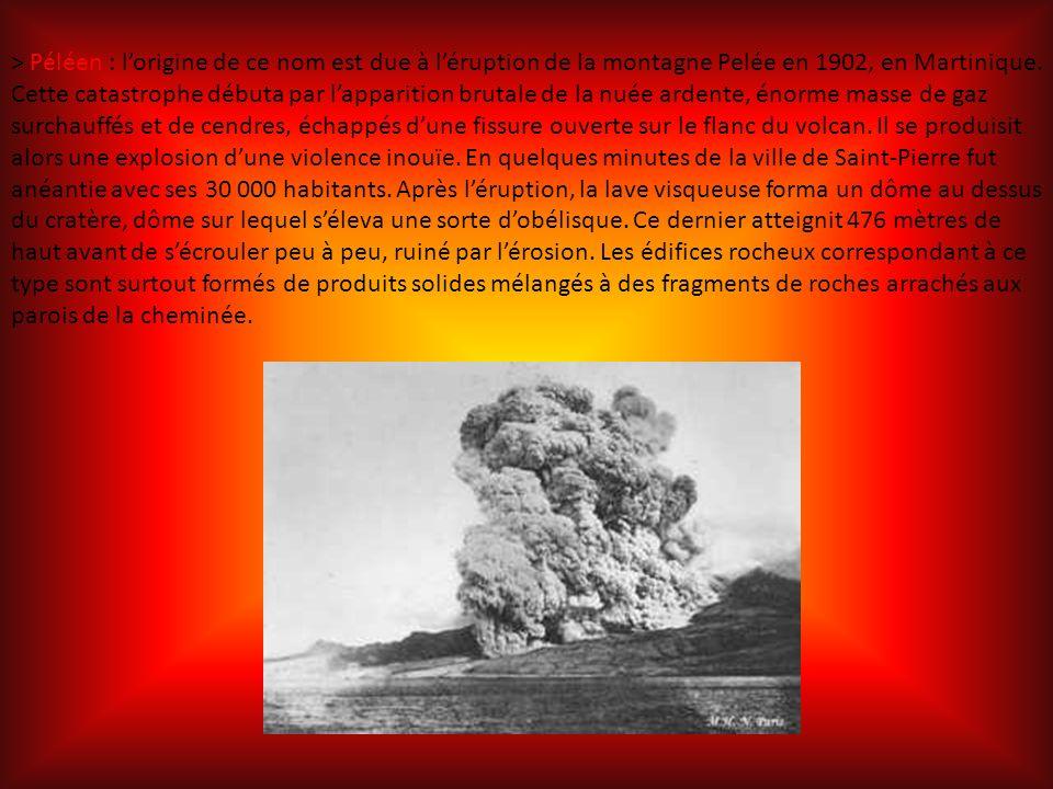 > Péléen : l'origine de ce nom est due à l'éruption de la montagne Pelée en 1902, en Martinique.