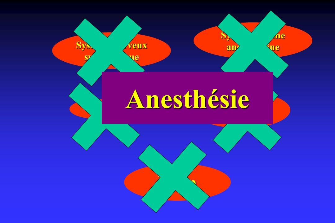 Anesthésie Rein Système rénine angiotensine