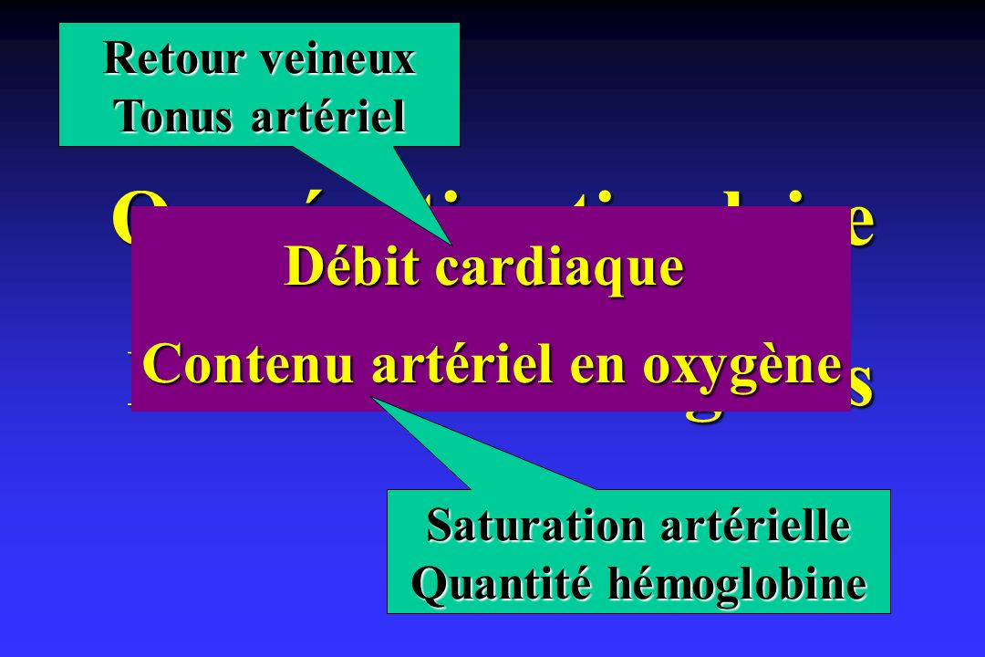 Oxygénation tissulaire Perfusion des organes
