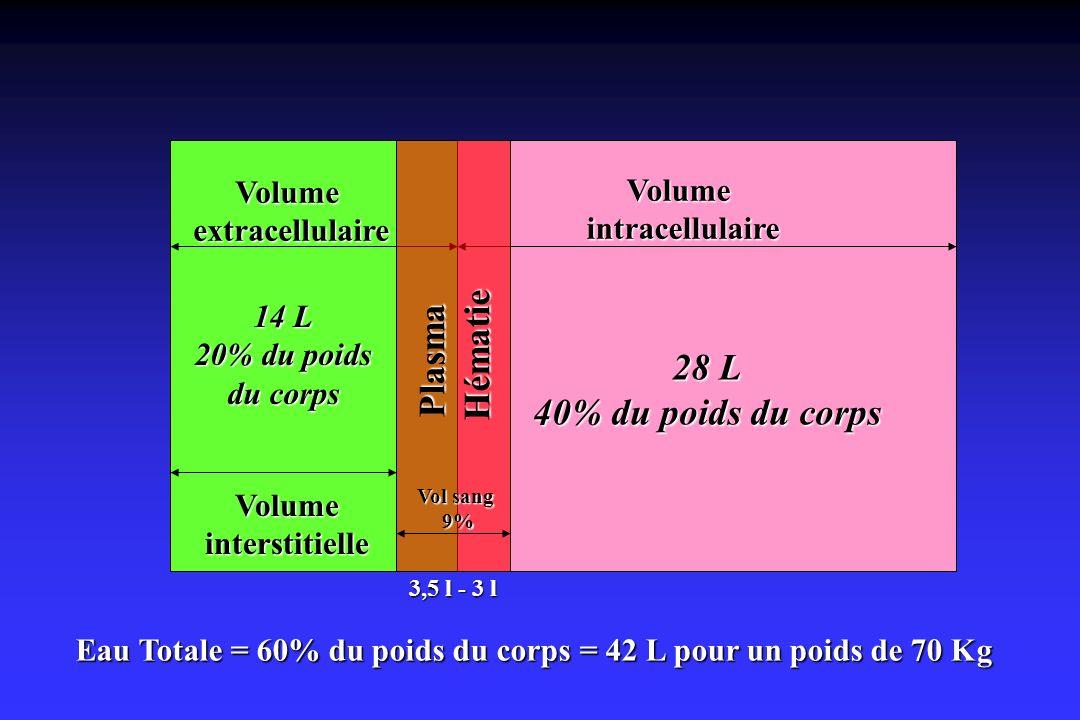 Eau Totale = 60% du poids du corps = 42 L pour un poids de 70 Kg