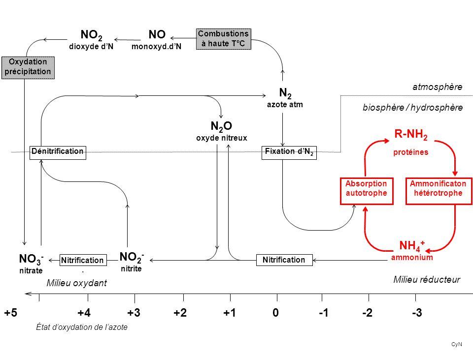 NO2 dioxyde d'N NO monoxyd.d'N N2 azote atm N2O oxyde nitreux NO3-