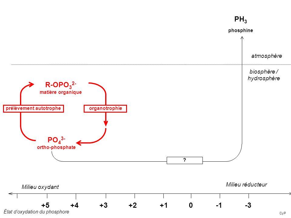 R-OPO32-matière organique