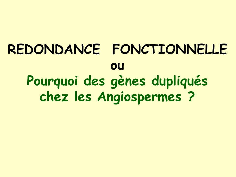 REDONDANCE FONCTIONNELLE Pourquoi des gènes dupliqués